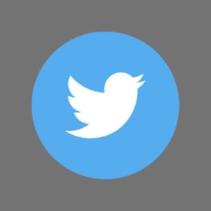 Buy Twitter PVA Accounts | Email Verified